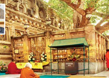 Buddha Trail